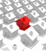 Laura Sheedy, Real Estate Pro in Lexington, MA