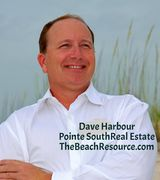 Dave Harbour, Real Estate Agent in Orange Beach, AL
