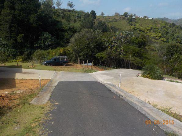 barranquitas county singles Difficult development areas:  bronx county, kings  aibonito municipio, barranquitas municipio, ciales municipio,.