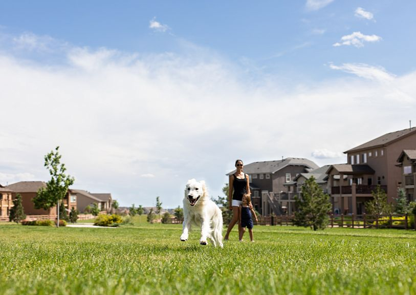 Wolf Ranch By Creekstone Homes In Colorado Springs Co Zillow