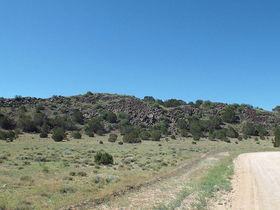 Tbd 107 18 029 Concho Valley AZ 85924