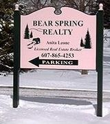 Bear Spring Realty, Agent in Walton, NY