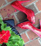 Dorothy Cart…, Real Estate Pro in Gainesville, VA
