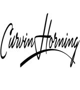 Curvin Horni…, Real Estate Pro in Akron Pa 17501, PA