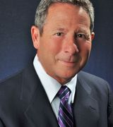 Louis  Wolfs…, Real Estate Pro in Needham, MA