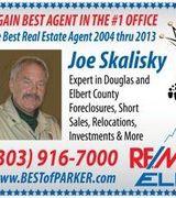 Joe Skalisky, Agent in CASTLE ROCK, CO