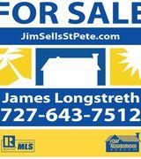 Jimsellsstpete, Agent in Saint Petersburg, FL