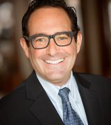 Ian Schwartz, Real Estate Agent in Chicago, IL