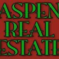 <em>Aspen</em> <em>Real</em> <em>Estate</em>, Real estate agent in Nisswa