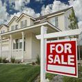 Andrea Grutman, Real estate agent in Belleair Bluffs