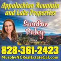 Sandra Daley, Real estate agent in Murphy