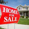 Sam Tontillo, Real estate agent in