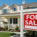 Max Steinmetz, Real estate agent in Farmington Hills