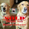 David Clesceri, Real estate agent in Fullerton