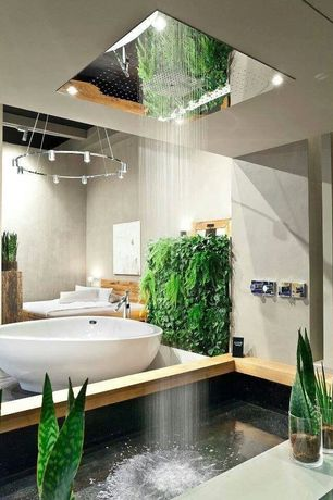 3 tags Tropical Master Bathroom with Rain Shower Head  Pendant Light   Victoria   albert vnapnrh napoliTropical Shower Head Design Ideas   Pictures   Zillow Digs   Zillow. Tropical Rain Shower Head. Home Design Ideas