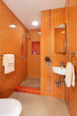 Orange Bathroom Budget Orange Bathroom Design Ideas & Pictures  Zillow Digs  Zillow