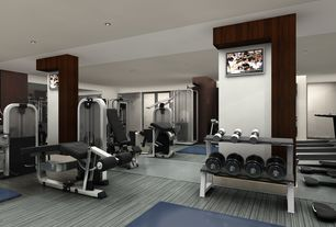 contemporary home gym with hardwood floors  zillow digs