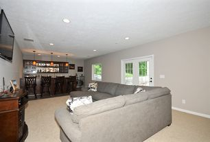 1 Tag Transitional Basement With Built In Bookshelf Pendant Light Hardwood Floors Carpet
