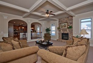Traditional Living Room With Crown Molding Columns Metal Fireplace High Ceiling Carpet