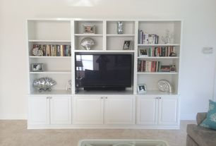 3 tags transitional living room with athens raised panel cabinets - Living Room Remodel Ideas