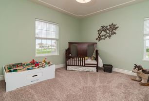 Sherwin Williams Clary Sage Design Ideas Amp Pictures