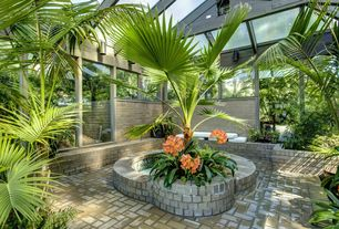 tropical green patio design ideas & pictures | zillow digs | zillow - Tropical Patio Design
