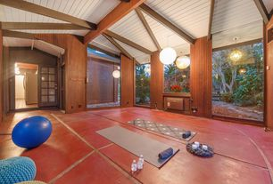 luxury contemporary home gym design ideas  pictures