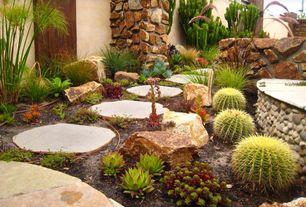 1 Tag Mediterranean Landscape/Yard With Fence, Pathway, Golden Barrel Cactus Good Ideas