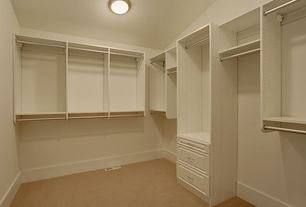 2 Tags Traditional Closet With Carpet, Flush Light, California Closets  Walk In Closet Custom Cabinetry