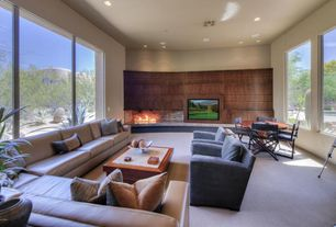 1 tag contemporary family room with carpet