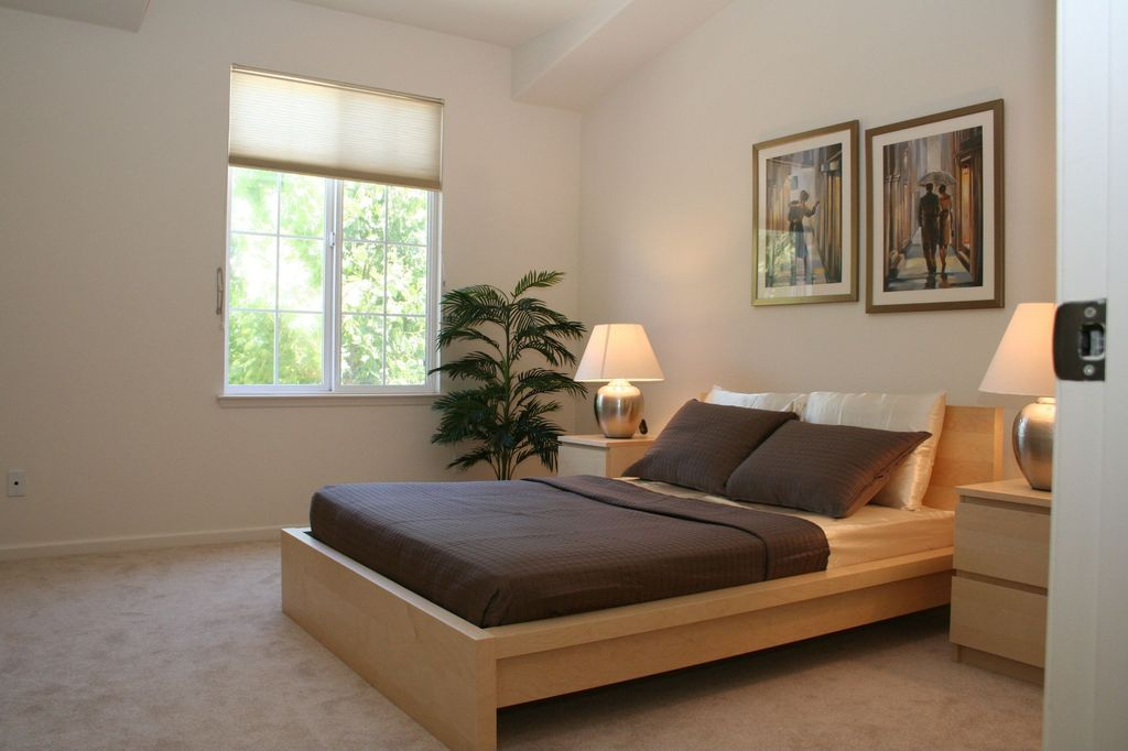 Modern Guest Bedroom with Concrete floors in San Jose, CA | Zillow ...