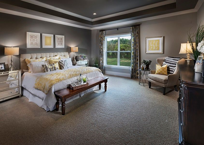 transitional master bedroom with carpet crown molding
