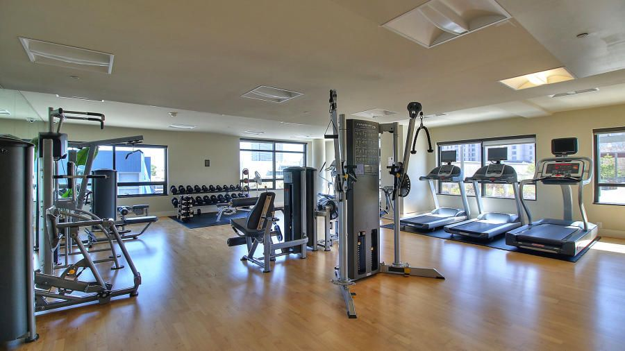 Luxury Modern Home Gym Design Ideas Pictures Zillow Digs Zillow - Home gym design ideas