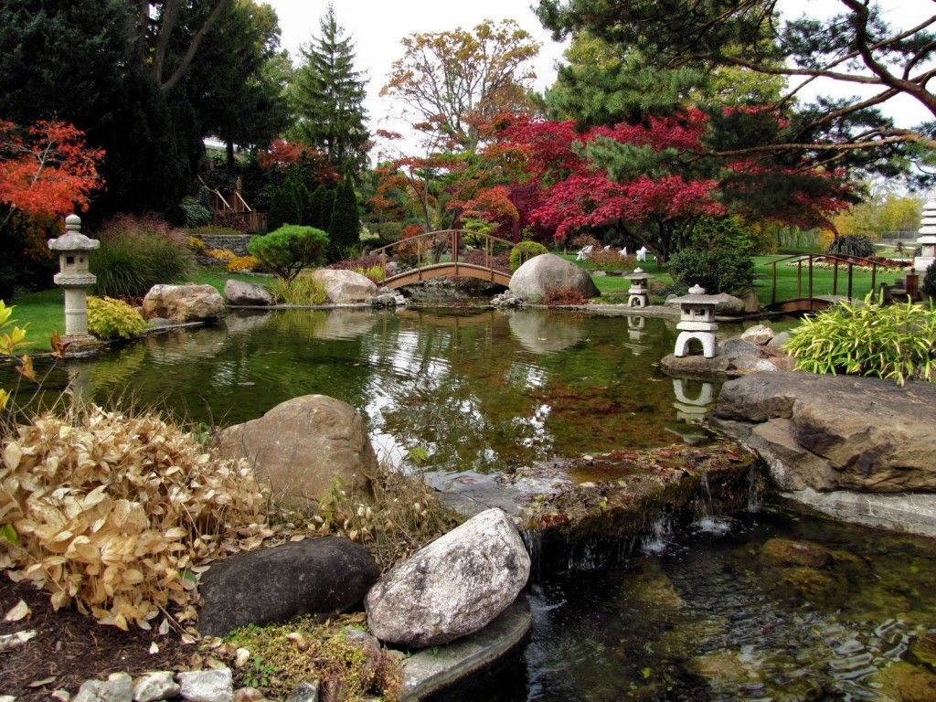 Asian landscape and yard with pond zillow digs zillow for Japanese pond