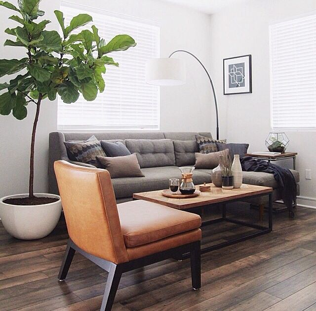 Traditional living room with hardwood floors zillow digs for Best west elm sofa