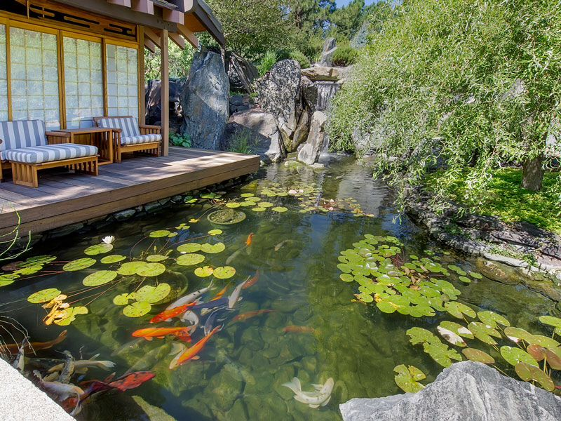 Asian landscape and yard with pond zillow digs zillow for Outdoor fish ponds for sale