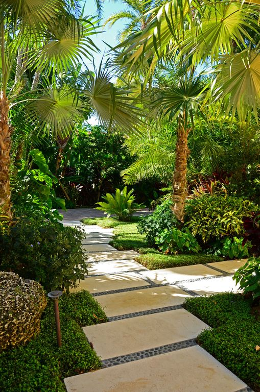 Tropical landscape and yard with pathway by lewis aq i for Tropical landscape