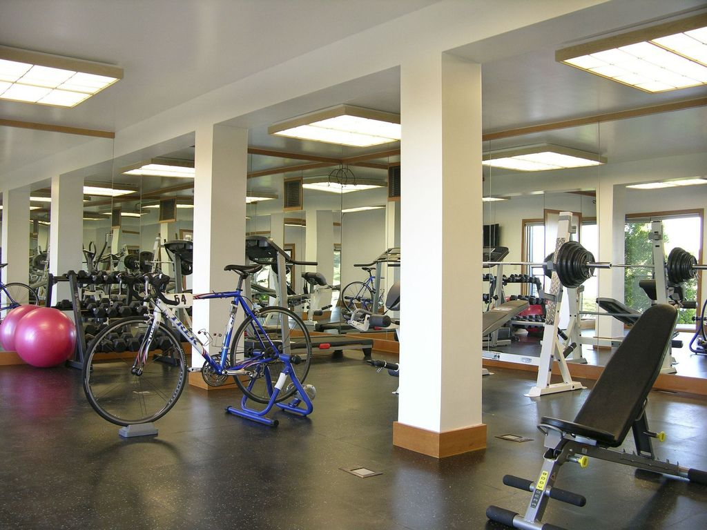modern home gym ideas design accessories u0026 pictures zillow