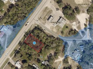 Eustis Florida Map.Sr 44 Eustis Fl 32736 Mls G4705679 Zillow