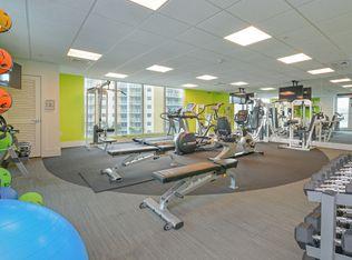 The Modern Miami Apartments - Miami, FL | Zillow