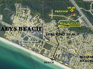 Seacrest Beach Florida Map.Silver Maple Dr Lot 65 Seacrest Fl 32461 Mls 779964 Zillow