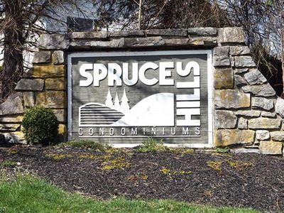 1306 Spruce Hills Dr Glen Gardner NJ 08826