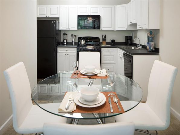 Peachy Apartments For Rent In Arlington Va Zillow Home Interior And Landscaping Ologienasavecom