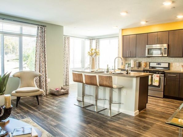 San Diego CA Pet Friendly Apartments amp Houses For Rent 761 Rentals  Zillow  San Diego. One Bedroom Apartment In San Diego