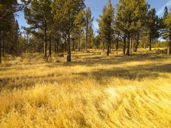 California Pines Lake - Alturas Real Estate - Alturas CA