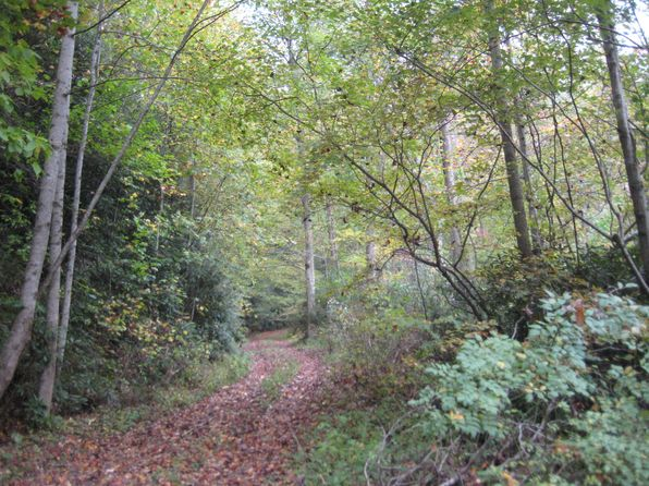 null bed null bath Vacant Land at 220 Woodhaven Holw Topton, NC, 28781 is for sale at 200k - 1 of 7