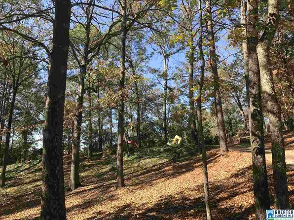 null bed null bath Vacant Land at 2576 Dolly Ridge Rd Vestavia, AL, 35243 is for sale at 299k - google static map