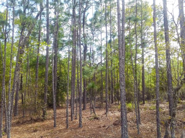 null bed null bath Vacant Land at  Andree Ave Interlachen, FL, 32148 is for sale at 2k - 1 of 19