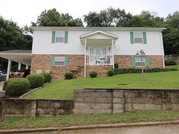 4 bed 3 bath Single Family at 202 Elizabeth Way South Point, OH, 45680 is for sale at 150k - 1 of 17