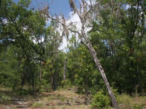 null bed null bath Vacant Land at 6429 NW 10TH AVE BELL, FL, 32619 is for sale at 8k - 1 of 2